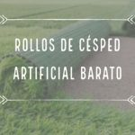 Cesped Artificial Barato Lujo Rollos De Césped Artificial Barato | Rbs Césped Artificial