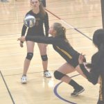 Mesa Juniors Volleyball Elegante News