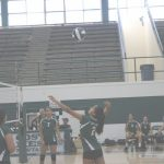 Mesa Juniors Volleyball Genial Saddleback   Team Home Saddleback Roadrunners Sports