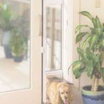 Patio Panel Pet Door Moderno Sliding Glass Dog Door | Dog Doors For Sliding Glass Doors
