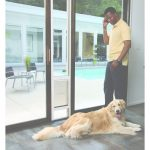 "Patio Panel Pet Door Único Petsafe Freedom Patio Panel Pet Door For 81"" Doors   Free Shipping"