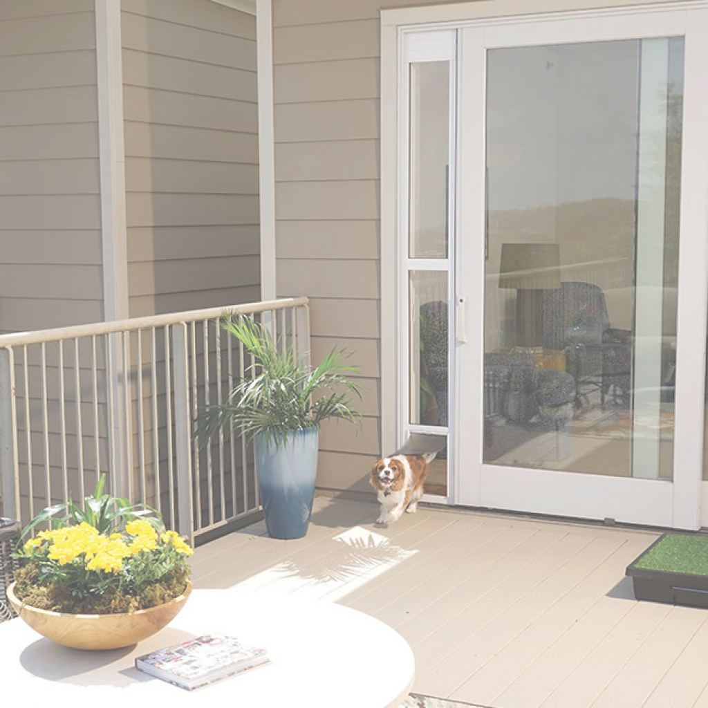 "Patio Panel Pet Door Único Shop For Sliding Glass Pet Door (For Frames Up To 81"")Petsafe"